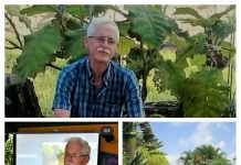 Chris Baasch amó la verde Venezuela